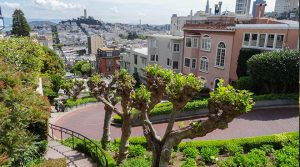 san-francisco-travel-lombard-street